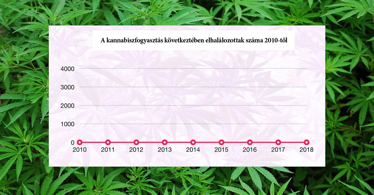 Kendertér - Cannabistote3