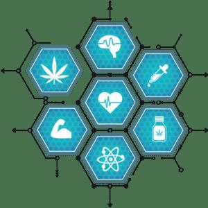 Kendertér - Cannabisforlife LOGO ai FINALPDF 300x300