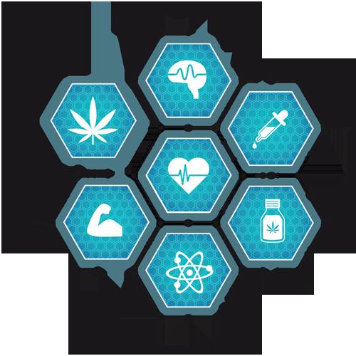 Kendertér - Cannabisforlife LOGO ai FINALPDF