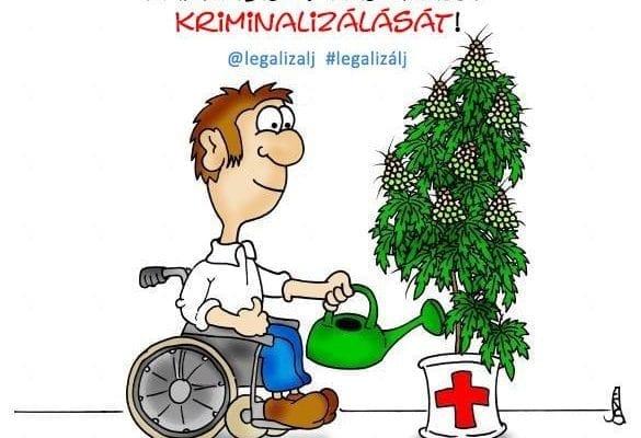 Kendertér - Állítsuk meg a gyógyászatilag kannabiszt használók kriminalizálását! - 79658045 1968263916653385 5563457325341081600 n 585x400