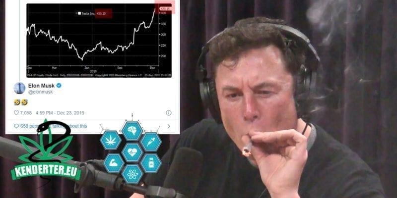 Kendertér - Elon Musk kannabiszra utaló vicceket közölt, mikor részvényei elérték a 420 dolláros árfolyamot! - 80067270 154396169303644 5378782647965188096 o 800x400