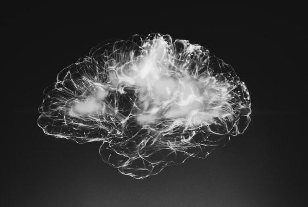 Kendertér - agy cbd