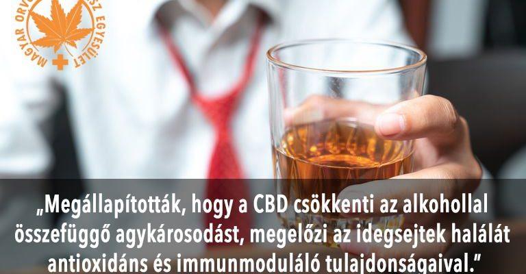 Kendertér - CBD és az alkohol kölcsönhatása! - 87485395 235075437656452 5760340352766574592 n 768x400