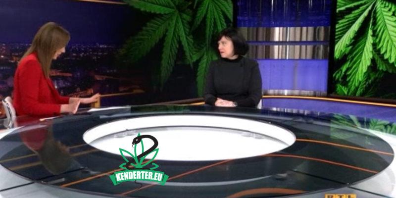 Kendertér - Lehet, hogy Horvátország már a héten legalizálja a kannabiszt! - horvat kannabisz 800x400