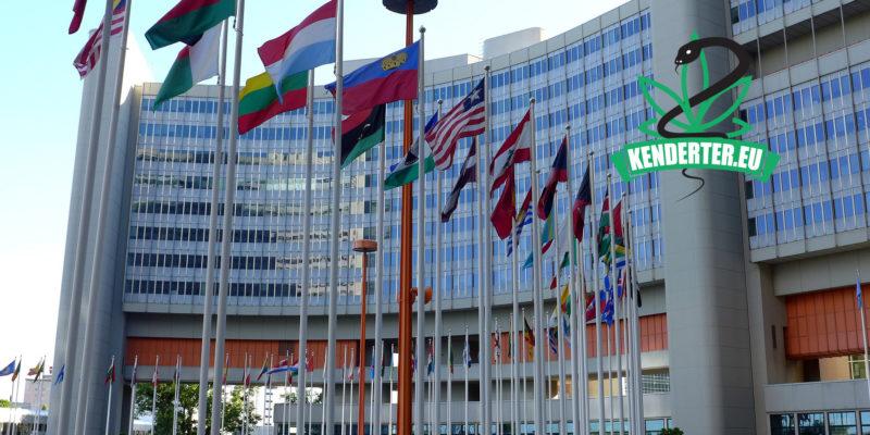 Kendertér - Kendertér Nőnap 2020 - united nations 3760656 1920 800x400