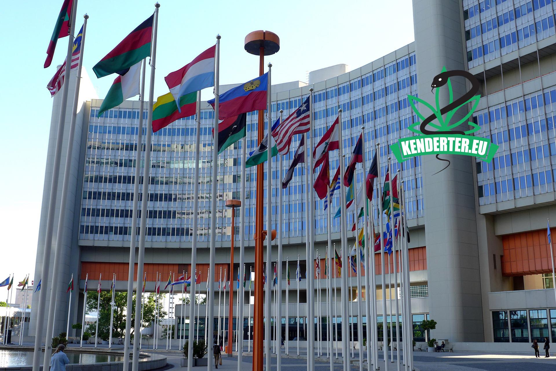 Kendertér - A CND ismét elnapolta a WHO által javasolt kannabisz besorolását érintő szavazást - united nations 3760656 1920