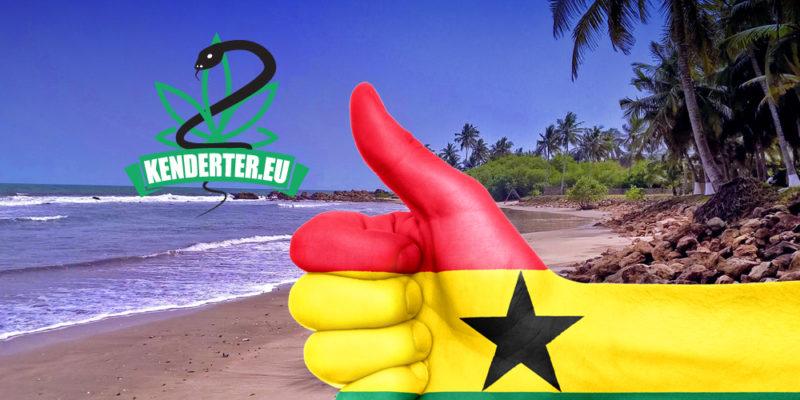 Kendertér - Nincs kapcsolat a kannabisz szívása és a szívbetegség között - ghana legalizal 800x400