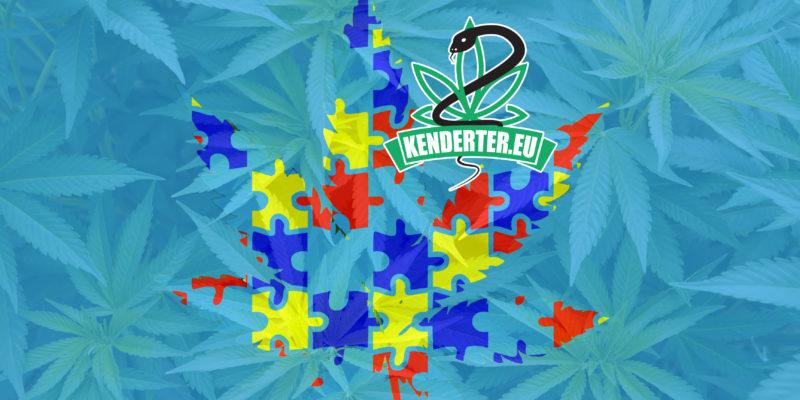 Kendertér - A CBD-ben gazdag kannabisz megoldást nyújthat az autisztikus spektrumzavarra - kannabisz autizmus poszt 800x400