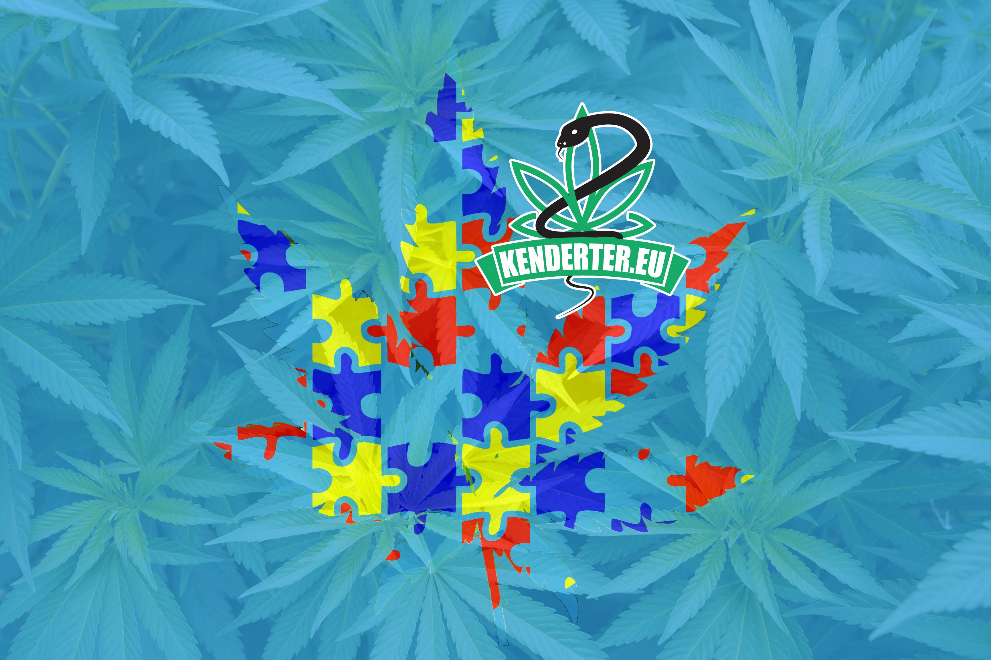 Kendertér - A CBD-ben gazdag kannabisz megoldást nyújthat az autisztikus spektrumzavarra - kannabisz autizmus poszt