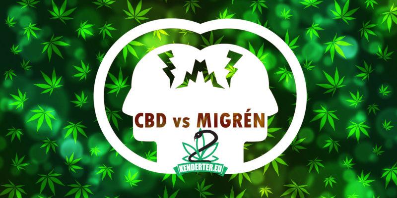 Kendertér - Mennyi CBD szükséges a migrén megelőzésére és kezelésére? - cbd migren 800x400