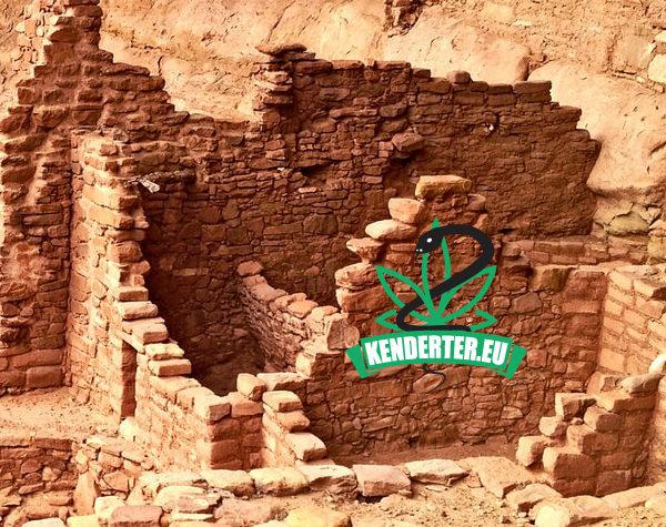 """Kendertér - Az ókori izraeliták """"kannabiszt égettek istentisztelet közben"""" - tel arad kannabisz 600x475"""