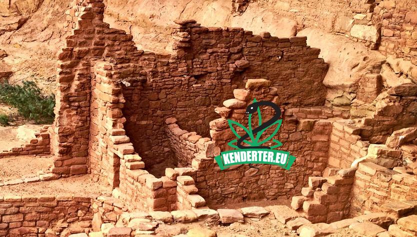 """Kendertér - Az ókori izraeliták """"kannabiszt égettek istentisztelet közben"""" - tel arad kannabisz"""