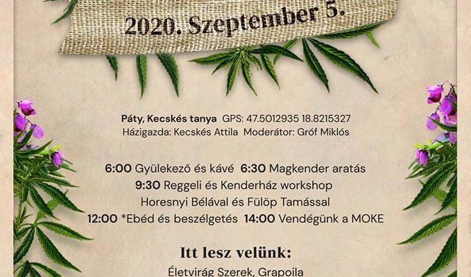 Kendertér - Kendertánc 2020 - 103565278 308854116945250 2143936378934932742 n 679x400