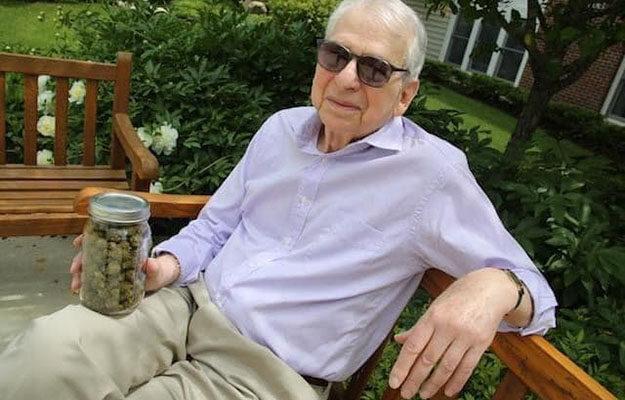 Kendertér - 92 évesen távozott közülünk Dr. Lester Grinspoon, a kannabisz legalizáció legendája - LesterGrinspoon MM 625x400