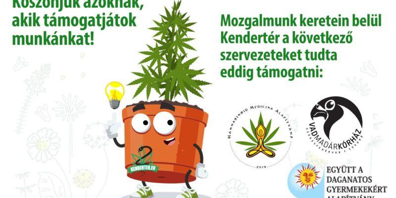 Kendertér - Kenderrel egy szebb Magyarországért mozgalom - 107616757 300030298073563 133729777649381930 o 800x400