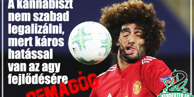 Kendertér - A kannabisz káros hatással van az agy fejlődésére! - foci kannabisz 800x400