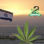 Kendertér - Izrael tonnákkal előzi meg Németországot kannabisz import terén - izrael nemetorszag kannabisz 150x150