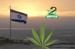 Izrael tonnákkal előzi meg Németországot kannabisz import terén