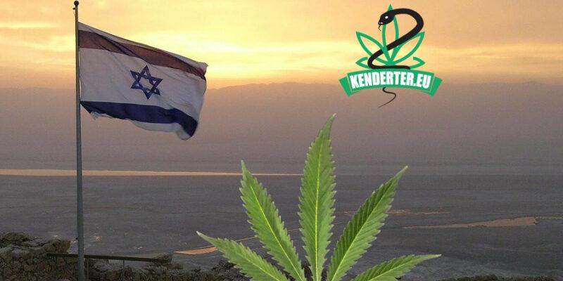 Kendertér - Izrael tonnákkal előzi meg Németországot kannabisz import terén - izrael nemetorszag kannabisz 800x400