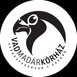 Kendertér - logo header