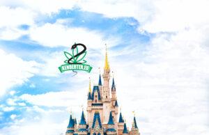 A Disney World-ben CBD miatt letartóztatott nagymama perli a társaságot komoly jogi csapattal a háta mögött