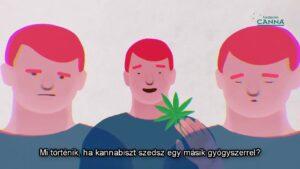 Kannabisz kölcsönhatások