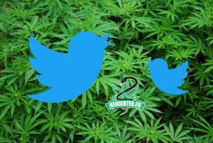 Twitter mostantól megjelöli a marihuánával kapcsolatos kereséseket, míg az alkoholt figyelmen kívül hagyja
