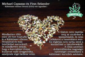 A kannabisz tiltása kudarcot valló drogpolitika