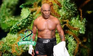 """Mike Tyson kannabiszt fogyasztott, közvetlenül mielőtt Roy Jones Jr. ellen harcolt volna: """"Egyszerűen ez vagyok én"""""""