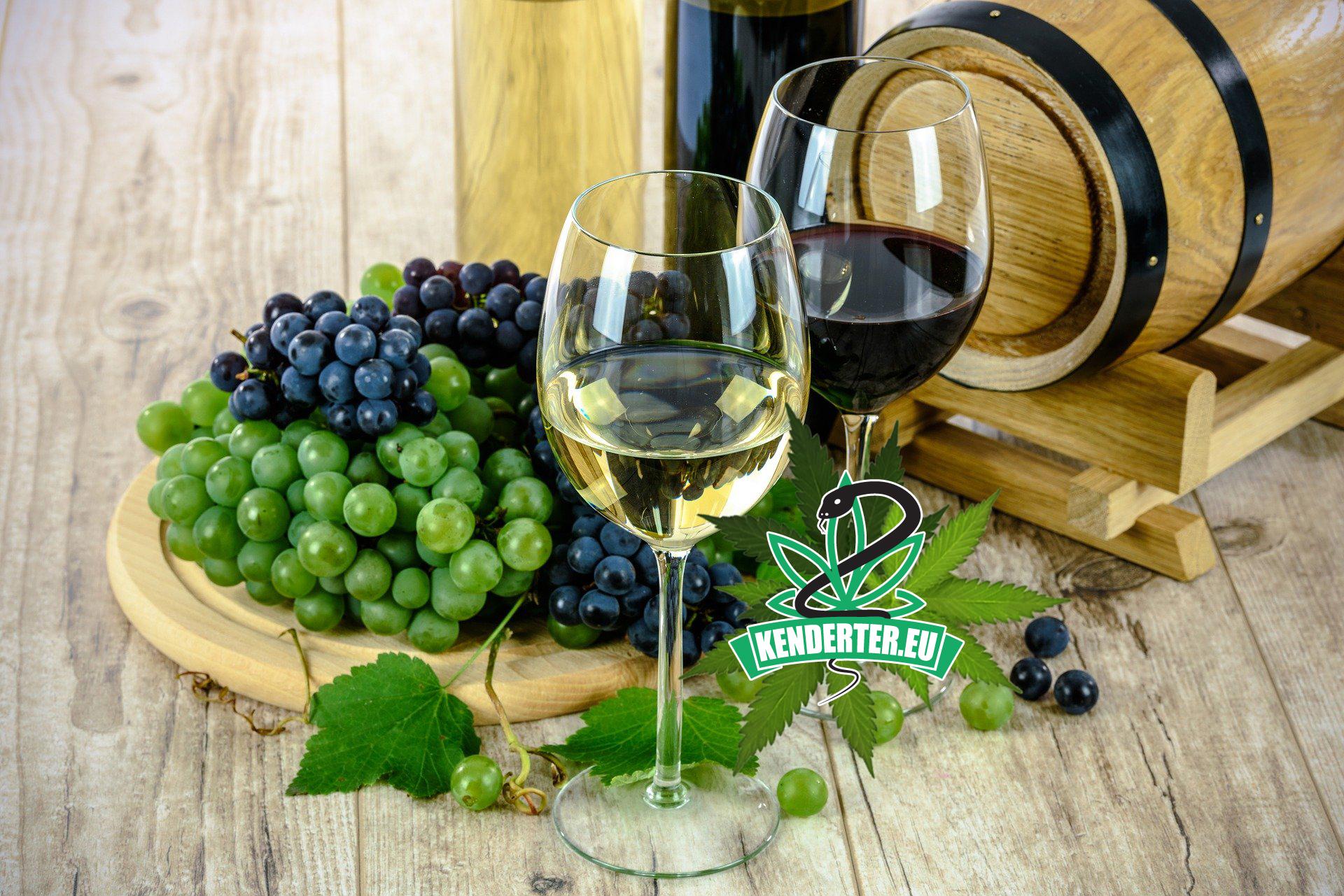 A garantált kikapcsolódás, az első francia kenderes bor