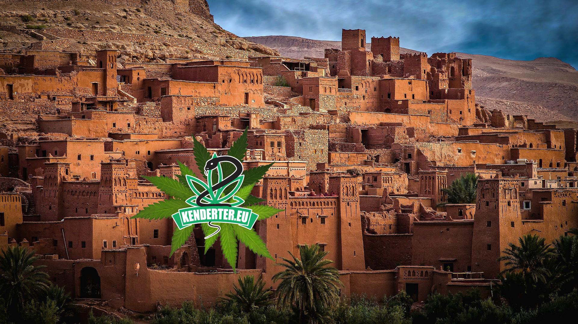 Hivatalos: Marokkó a jövő héten legalizálja a kannabiszt