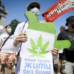 Ukrajna legalizálta az orvosi kannabisz bizonyos típusait