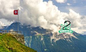 A Svájcban hamarosan induló rekreációs kannabisz kísérleti programok friss részletei