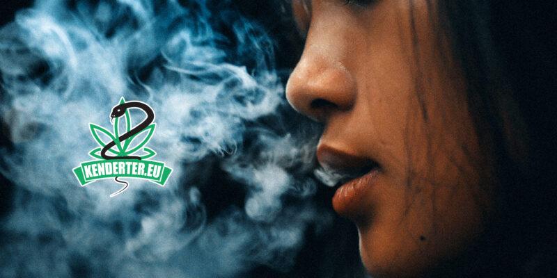 A tisztán kannabiszt fogyasztók kevesebb mérgező anyagnak vannak kitéve, mint a dohányosok
