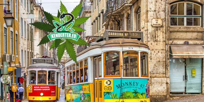 Portugália parlamentje Európában elsőként kezd bele a kannabisz rekreációs legalizálásának megvitatásába