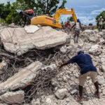 Haiti újjáépítése kenderből és bambuszból